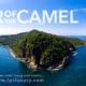 Ear of the Camel - Punta Mita- Riviera Nayarit - Mexico